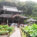 三室戸寺-本堂